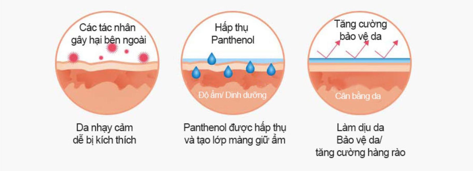 cong dung panthenol vitamin b5